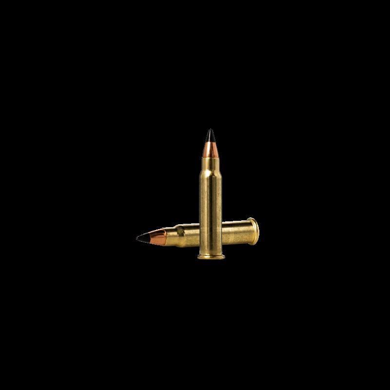 .17 HMR Cartridge