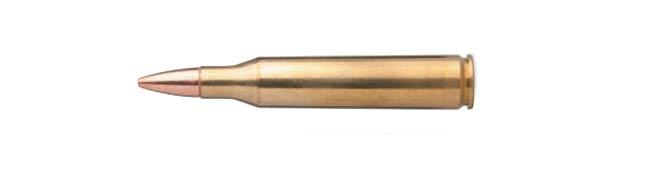 .25-06 Rem. Cartridge